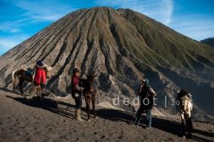 Dilereng Bromo, banyak warga menyediakan jasa sewa kuda bagi wisatawan yang ingin melakukan pendakian ke puncak gunung meski hanya bisa diantar hingga anak tangga pertama.