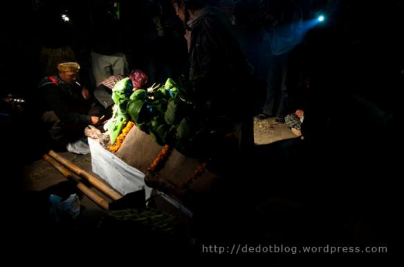 Seekor kerbau yang sudah dihias sedemikian rupa adalah hewan kurban yang akan dijadikan Yadnya Kasada pada tahun ini.